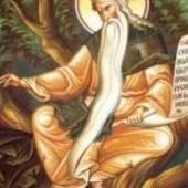 Seliger David von Thessaloniki, Johannes, Bischof der Goten