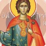 Martyrer Tryphon, Basileios von Thessaloniki